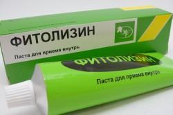 Фитолизин, паста д/приема внутрь 100 г №1